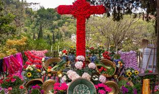 5월, 십자가가 붉게 피어나는 봄