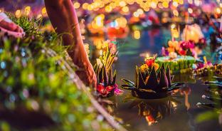 11월, 소원을 태운 연꽃 배의 향연