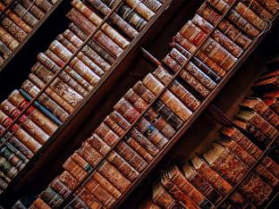 도서관 여행