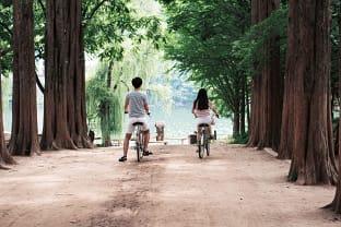 남이섬 자전거