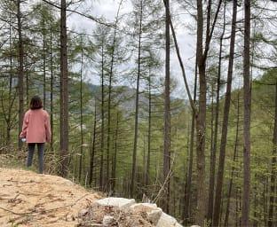 숲체원 트래킹