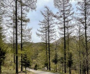 횡성 숲체원