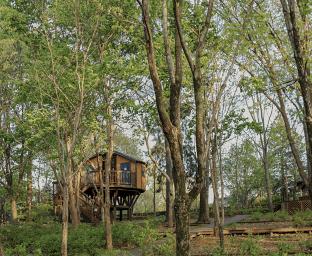 전주수목원