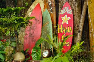 하와이 서핑