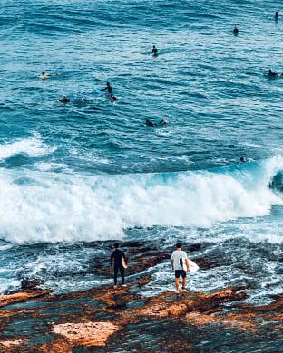 시드니 서핑 포인트