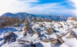 태백산 겨울