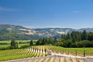 캘리포니아 와인
