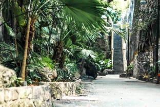 바하마 여왕의 계단