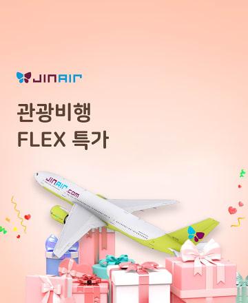 관광비행 FLEX 특가