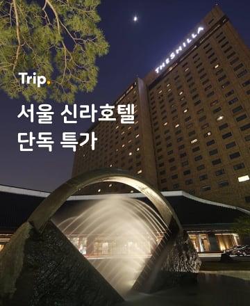 서울 신라호텔 단독 특가