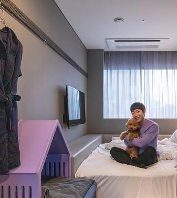 """""""댕댕이와 함께 할래요"""" 카푸치노 호텔 투숙기"""