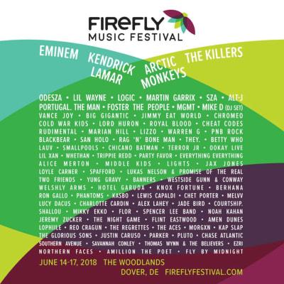 Firefly Music Festival Flyer