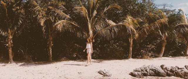 Beautiful Key Largo Florida Tropics