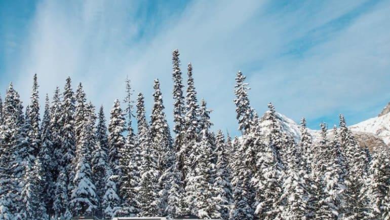 RV winterization, how to winterize RV