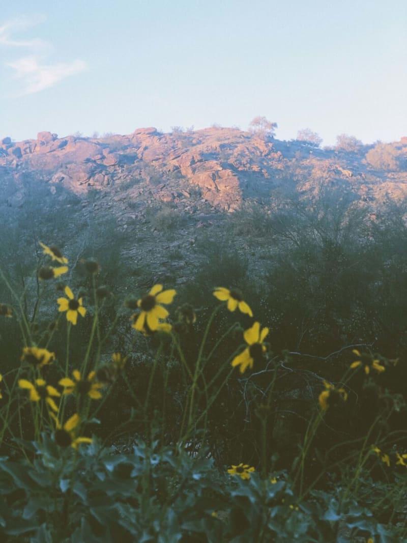 Hiking at Pima Country Trailhead, Arizona