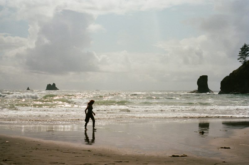 beaches of Olympic National Park