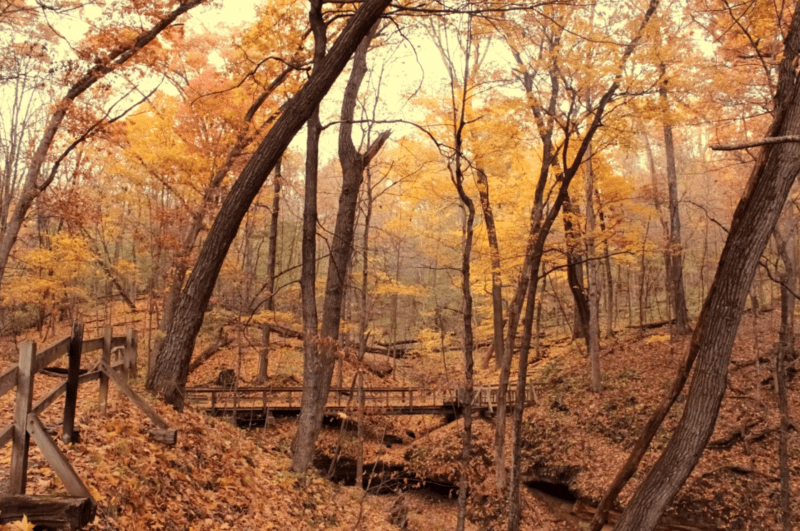 Most Beautiful and Short Hike in Iowa