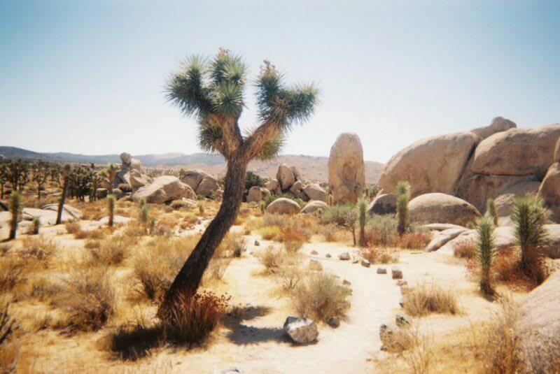 California RV Campgrounds