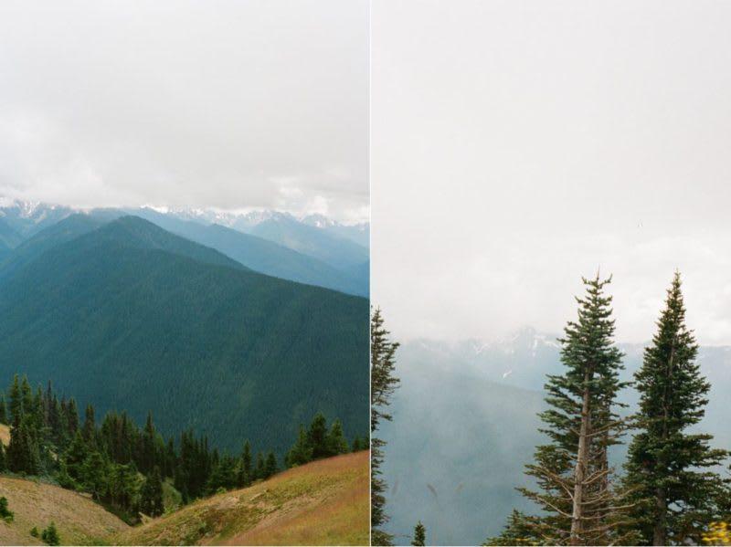 hurricane ridge, prettiest drive in Olympic National Park