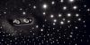 Thumbnail Image #41 of our  2021 LAMBORGHINI URUS STARLIGHT - ORANGE    In Miami Fort Lauderdale Palm Beach South Florida