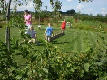 Nationaal Fruitpark Ochten