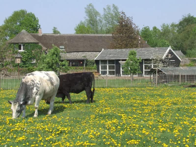 Doe-boerderij An 't Hoag