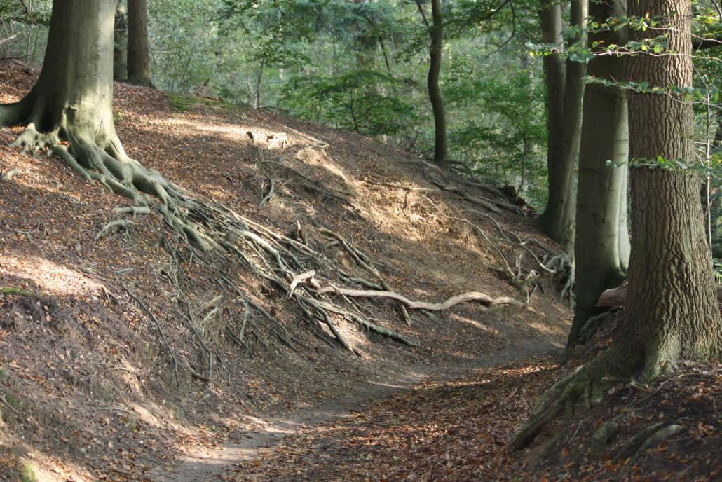 Opstappunt Fietsroutes | Eethuis De Kaleberg