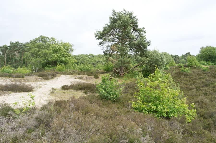 Natuurpoort Stayokay