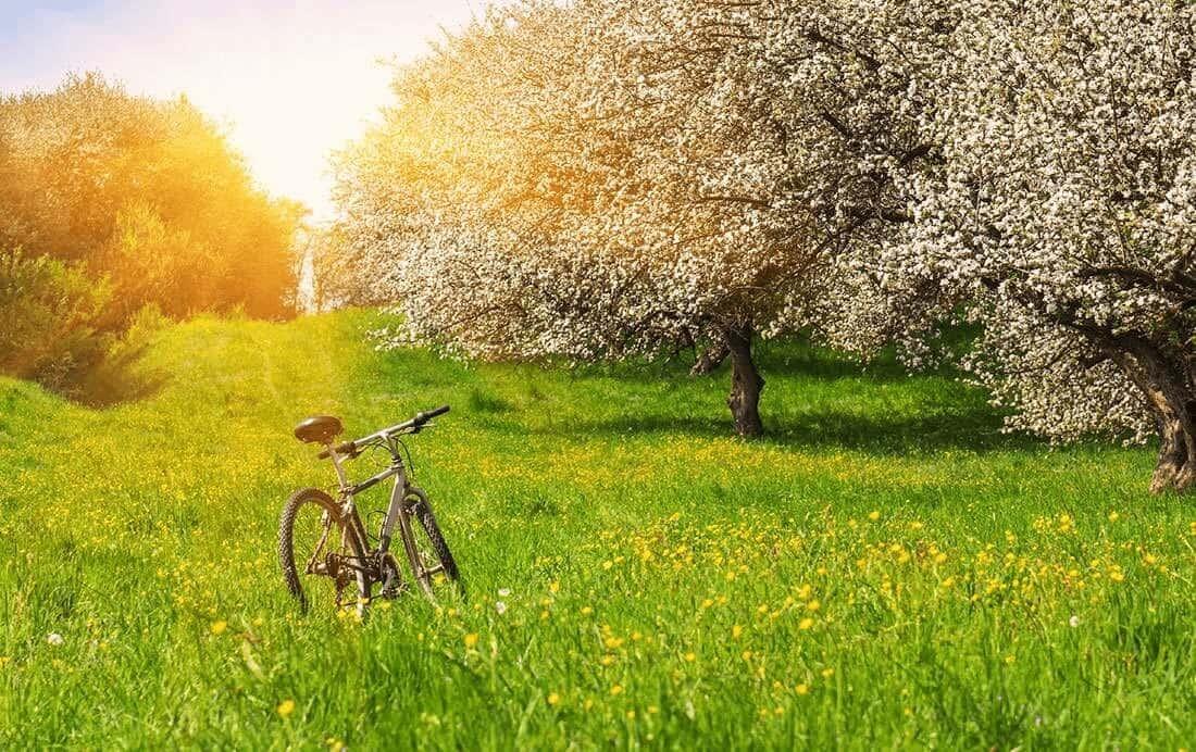 Knooppunten fietsen