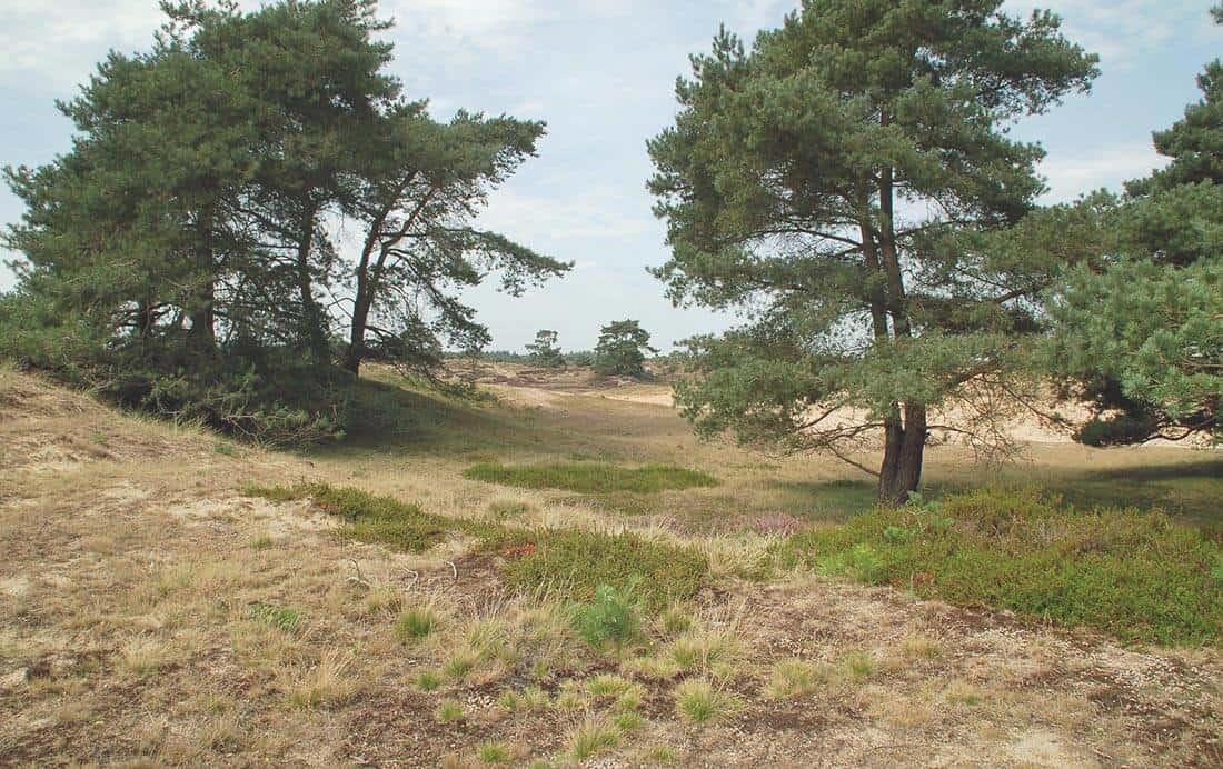 Fietsroutes Drenthe