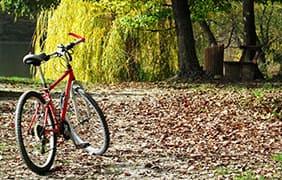 De ideale fietsroute