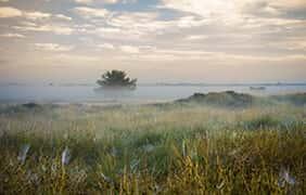 Fietsroute door twee nationale parken