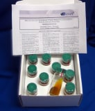 Dermatophytes® img
