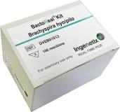 BactoReal® Kit Brachyspira hyo/pilo img