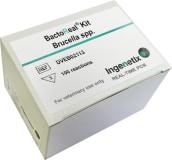 BactoReal® Kit Brucella spp. img