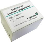 BactoReal® Kit Brachyspira hyodysenteriae img