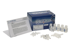 Bacterial Genomic DNA Isolation Kit img