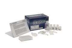 Blood DNA Isolation Kit  img