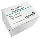 BactoReal® Kit Histophilus somni  img