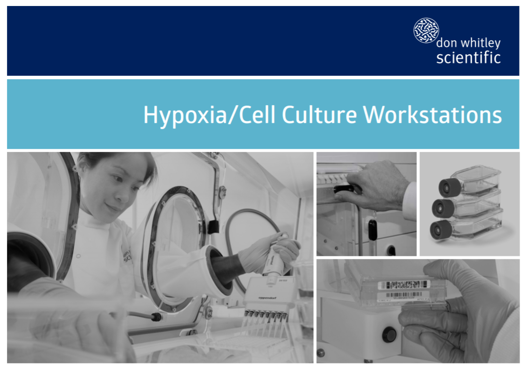 Hypoxia/Cell culture workstations