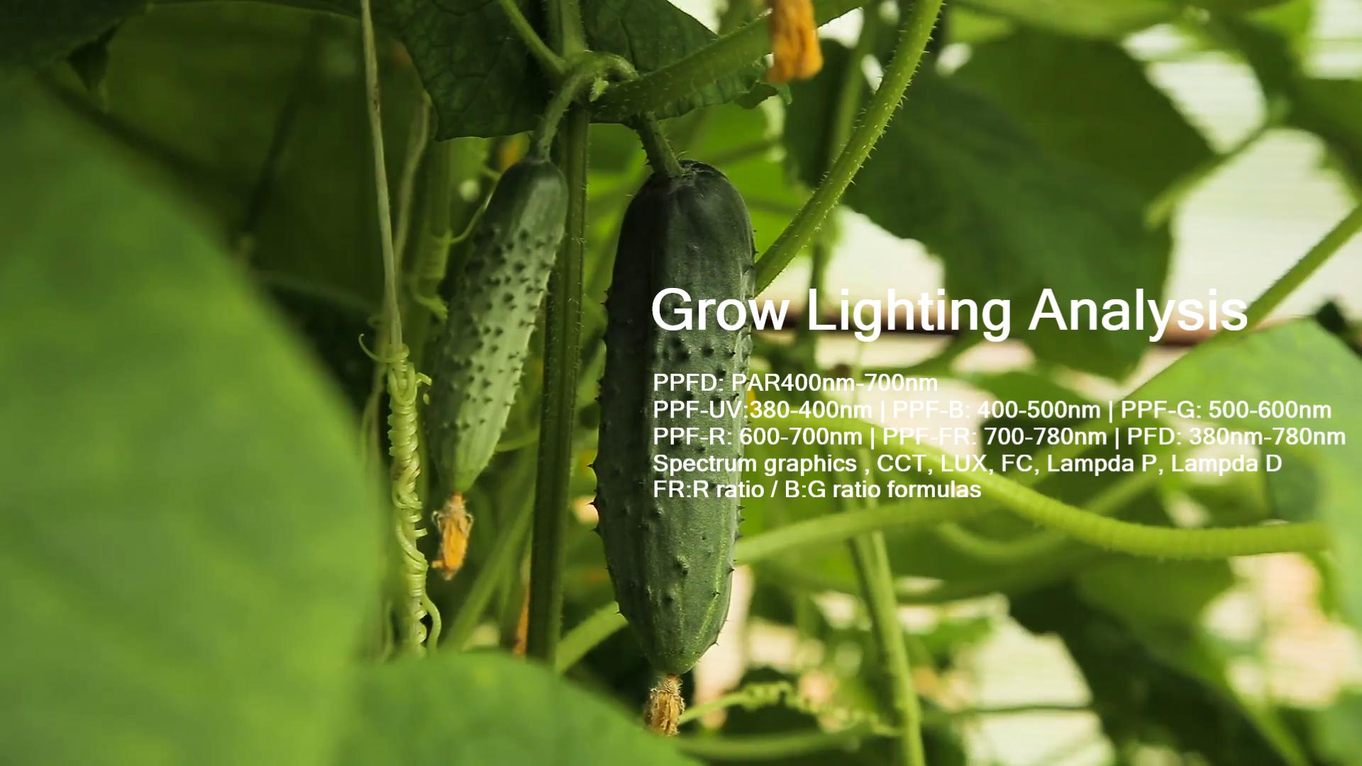 growth lighting analysis