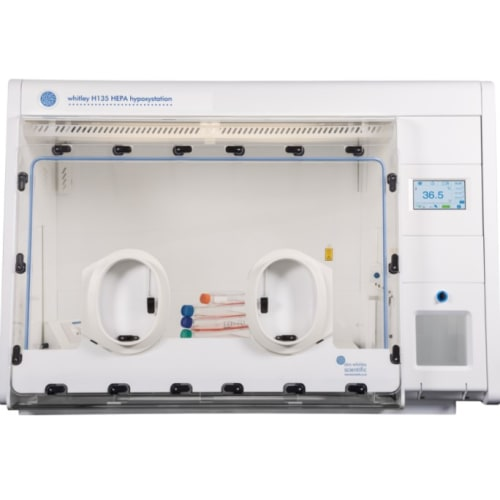 ANAEROBIC AND HYPOXIC WORKSTATIONS img