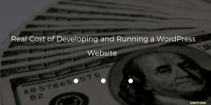 Real Cost of Developing and Running a WordPress Website - CMS2CMS