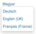 DropDown text only