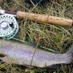 Fly Fishing For Summer Trout