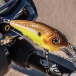 Crankbait Selection Part 2