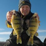 Hunting for Big Perch Through the Ice