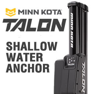 Talon Shallow Water Anchor