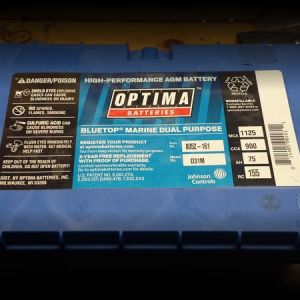Optima D31 Marine Battery