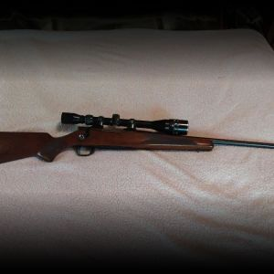 Model 1500 .223 Smith & Wesson rifle
